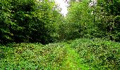 Randonnée Marche LONGPONT - en forêt de Retz_28_Longpont_Cabaret_A - Photo 99
