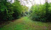 Randonnée Marche LONGPONT - en forêt de Retz_28_Longpont_Cabaret_A - Photo 197