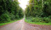 Randonnée Marche LONGPONT - en forêt de Retz_28_Longpont_Cabaret_A - Photo 141