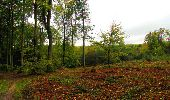 Randonnée Marche LONGPONT - en forêt de Retz_28_Longpont_Cabaret_A - Photo 79