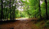 Randonnée Marche LONGPONT - en forêt de Retz_28_Longpont_Cabaret_A - Photo 67