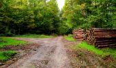 Randonnée Marche LONGPONT - en forêt de Retz_28_Longpont_Cabaret_A - Photo 57