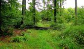 Randonnée Marche LONGPONT - en forêt de Retz_28_Longpont_Cabaret_A - Photo 155