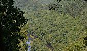 Trail Walk La Roche-en-Ardenne - Bérismenil - Circuit Natura 2000, des sites qui valent le détour - Lx19 - Photo 1
