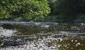 Trail Walk La Roche-en-Ardenne - Bérismenil - Circuit Natura 2000, des sites qui valent le détour - Lx19 - Photo 6