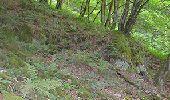 Trail Walk La Roche-en-Ardenne - Bérismenil - Circuit Natura 2000, des sites qui valent le détour - Lx19 - Photo 3