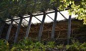 Trail Walk La Roche-en-Ardenne - Bérismenil - Circuit Natura 2000, des sites qui valent le détour - Lx19 - Photo 11