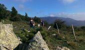 Trail Walk L'ALBERE - Puig Neuios depuis le col de l'Ouillat - Photo 3