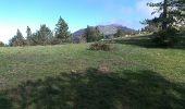 Trail Walk L'ALBERE - Puig Neuios depuis le col de l'Ouillat - Photo 2