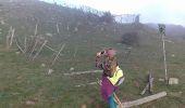 Trail Walk L'ALBERE - Puig Neuios depuis le col de l'Ouillat - Photo 10