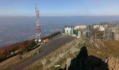 Trail Walk L'ALBERE - Puig Neuios depuis le col de l'Ouillat - Photo 6