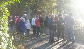 Trail Walk MAUREPAS - rando du 06/11/2014 - Photo 16