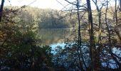 Trail Walk MAUREPAS - rando du 06/11/2014 - Photo 4