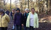 Trail Walk MAUREPAS - rando du 06/11/2014 - Photo 5