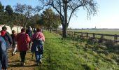 Trail Walk MAUREPAS - rando du 06/11/2014 - Photo 6