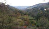 Randonnée Course à pied SAINT-ETIENNE - camps egauds ND Hermitage GR7 jasserie perdrix bessat Salvaris camps - Photo 5