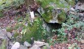 Trail Walk SAINT-ETIENNE-LES-REMIREMONT - De Xennois au Saint-Mont - Photo 4