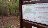 Randonnée Marche ELANCOURT - Etang de la Boissière 13/11/2014 - Photo 8