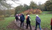 Randonnée Marche ELANCOURT - Etang de la Boissière 13/11/2014 - Photo 7
