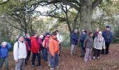 Randonnée Marche ELANCOURT - Etang de la Boissière 13/11/2014 - Photo 6