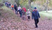 Randonnée Marche ELANCOURT - Etang de la Boissière 13/11/2014 - Photo 5