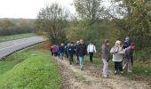 Randonnée Marche ELANCOURT - Etang de la Boissière 13/11/2014 - Photo 4