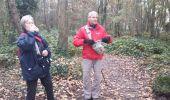 Randonnée Marche TRAPPES - rando du 20/11/2014 - Photo 14