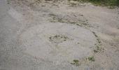 Trail Equestrian Assesse - Assesse - Promenade Cavaliers-Attelages C1 - Photo 18
