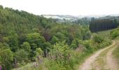 Randonnée Marche nordique Sainte-Ode - Lavacherie - La Méridionale (NW4) - Photo 2