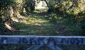 Trail Walk LA LONDE-LES-MAURES - Argentiere à Brégançon - Photo 35