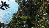 Trail Walk LA LONDE-LES-MAURES - Argentiere à Brégançon - Photo 34
