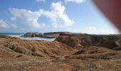 Randonnée Marche SAINTE-ANNE - savane des petrifications - Photo 3