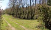 Trail Walk Momignies - (Momignies) (12) - Promenade des Aisements - Photo 3