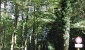 Trail Walk Momignies - (Momignies) (12) - Promenade des Aisements - Photo 2