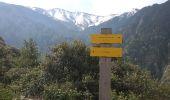 Randonnée Marche VERNET-LES-BAINS - cogollo - Photo 6