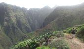 Randonnée Marche Unknown - Punta de  Hidalgo - Batan de Abajo - Photo 21