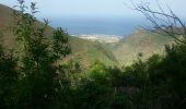 Randonnée Marche Unknown - Punta de  Hidalgo - Batan de Abajo - Photo 20
