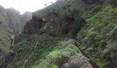 Randonnée Marche Unknown - Punta de  Hidalgo - Batan de Abajo - Photo 18