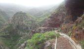 Randonnée Marche Unknown - Punta de  Hidalgo - Batan de Abajo - Photo 15