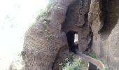 Randonnée Marche Unknown - Punta de  Hidalgo - Batan de Abajo - Photo 14