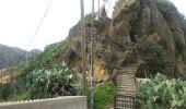 Randonnée Marche Unknown - Punta de  Hidalgo - Batan de Abajo - Photo 12