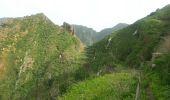 Randonnée Marche Unknown - Punta de  Hidalgo - Batan de Abajo - Photo 10