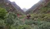 Randonnée Marche Unknown - Punta de  Hidalgo - Batan de Abajo - Photo 3