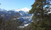 Randonnée Raquettes à neige LES VIGNEAUX - Clot de la Siva - Photo 4