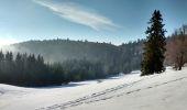 Randonnée Marche VENTRON - Chaume des Vintergés et Haut de Felsach - Photo 2
