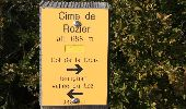Randonnée Marche ROCHE-SAINT-SECRET-BECONNE - La Roche St Secret - Photo 1