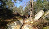 Randonnée V.T.T. MILLY-LA-FORET - Ballade d'une heure dans les Trois pignons depuis Milly - Photo 4