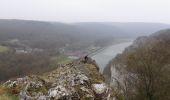Trail Walk Dinant - Des Rochers de Freyr aux Rochers des Crétias - Photo 1