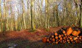 Randonnée Marche LONGPONT - en forêt de Retz_31_Longpont_carrefour de la Pointe Chemise_AR - Photo 4