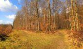 Randonnée Marche LONGPONT - en forêt de Retz_31_Longpont_carrefour de la Pointe Chemise_AR - Photo 2